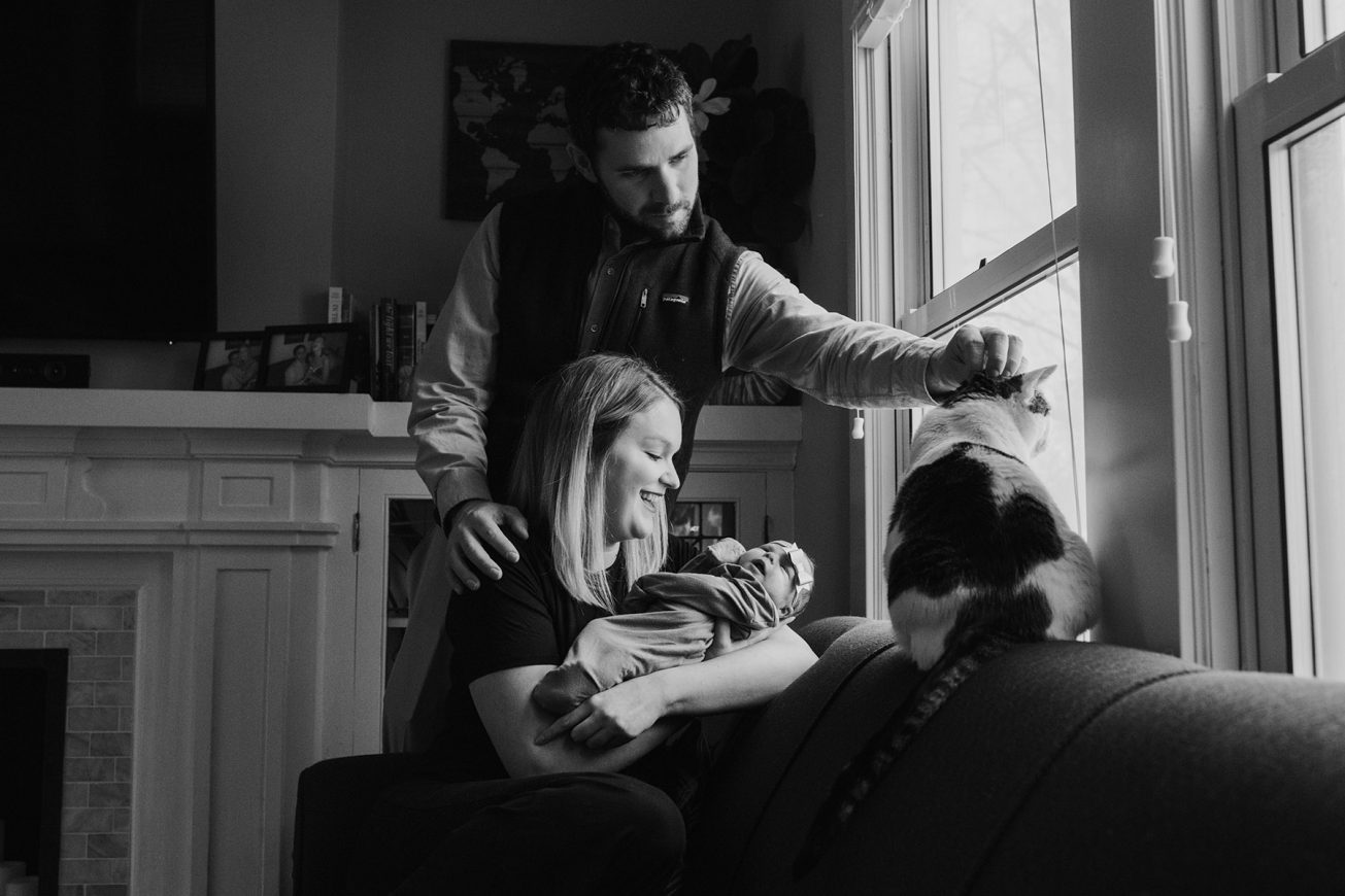 newborn with mom dad and cat tips on including your cat in your newborn images
